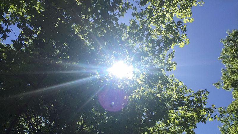 manfaat-sinar-matahari-untuk-kulit